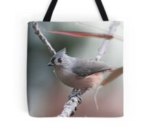 Tufted titmouse on an autumn afternoon Tote Bag
