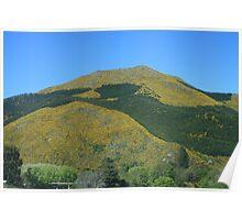 Grassy Mountain NZ Poster
