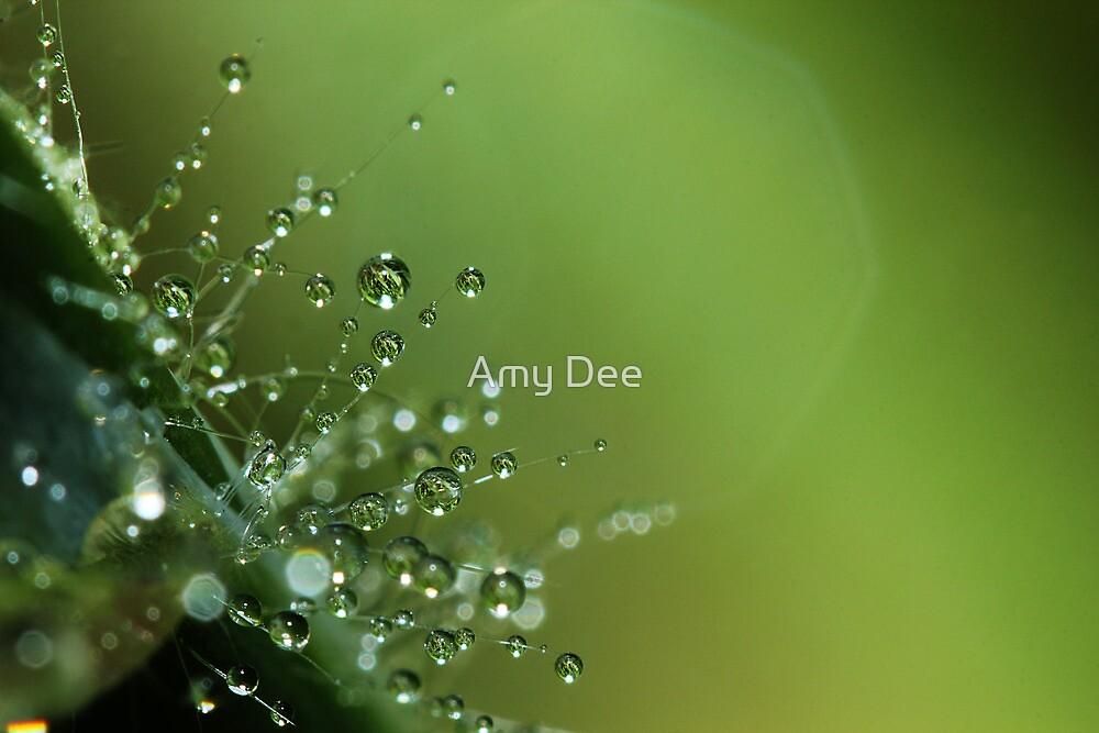 A little bit of grass, a little bit of water = lovely by Amy Dee