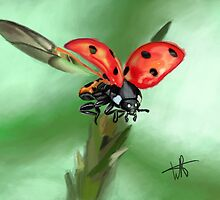 lady bug by eptigo