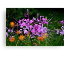 Colour of Nature Canvas Print
