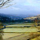 Gunnerside #2 - North Yorkshire by Trevor Kersley