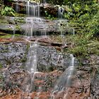 McCarrs Creek Road Waterfall by Jason Ruth