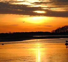 Fading Sun, Quonochotaug, RI by mnelle