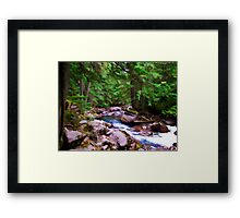 The Path of The Stream Framed Print