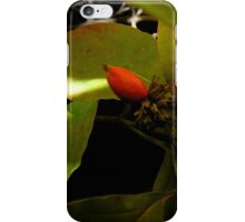 Autumn Nightscapes iPhone Case/Skin