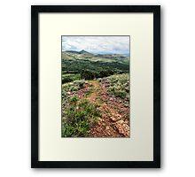 Ravine Walk Framed Print