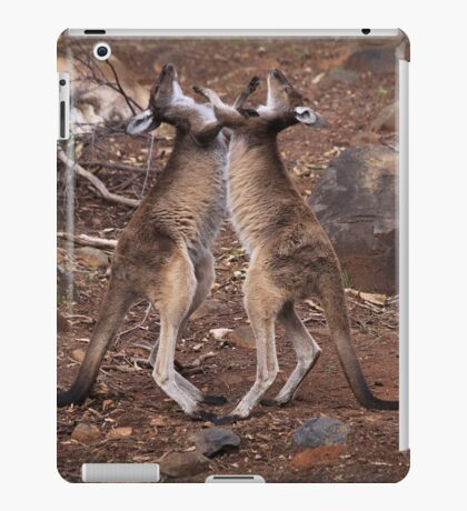 kangaroo's fighting, Perth hill's, Western Australia iPad Case/Skin