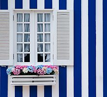 Beautiful typical window by homydesign