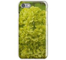 A Green Floral Ball iPhone Case/Skin