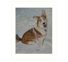 Blue - Portrait of a Siberian Husky in the Snow Art Print