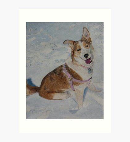 Blue - Portrait of a Siberian Husky in the Snow Art Print