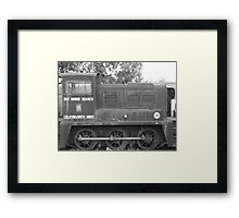 The old Gal Framed Print