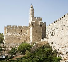Tower of David, Jerusalem by idoavr