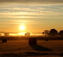 Sunrise Over Somerset by Mjay
