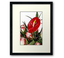 Beautiful red anturio flowers Framed Print