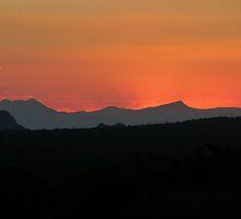 Orange Sunset at Pride Rock by LivWildlife