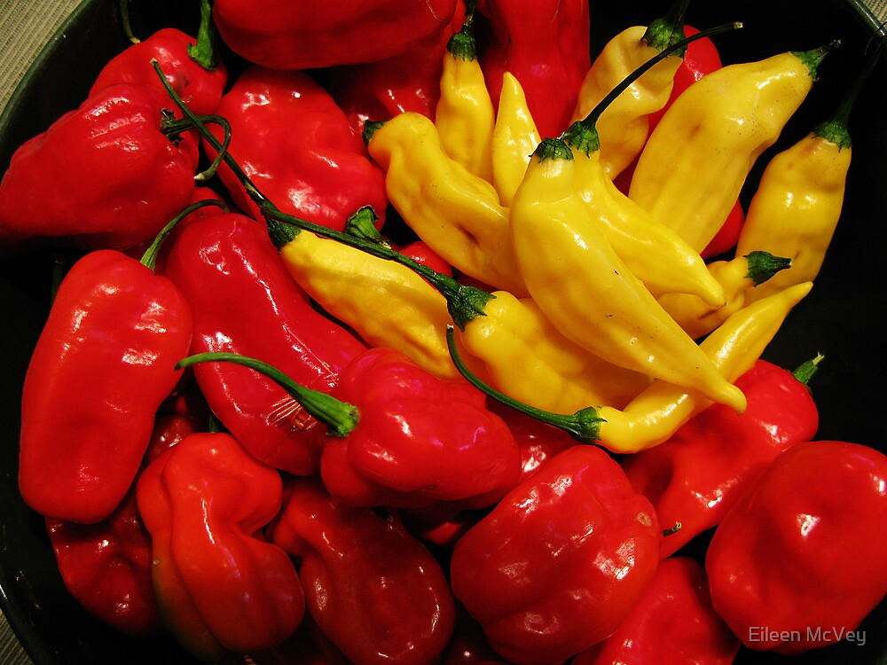 Red and Yellow Peppers by Eileen McVey