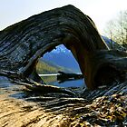 Arch by the Lake by Roads Not Traveled by Ric J