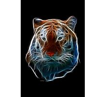 Tiger-Power Animals by Liane Pinel Photographic Print