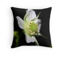 Rubus probus Throw Pillow