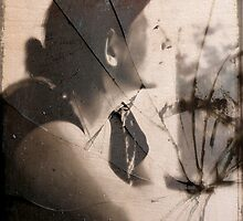 Portrait of a Shattered Wife by Scott Mitchell