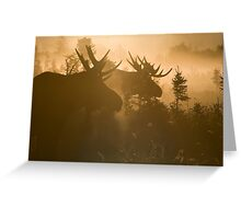 A Foggy Morning Greeting Card
