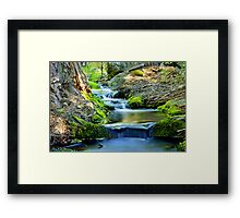 Graceful Passage Framed Print