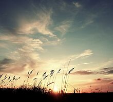 Vintage Sunset by Kevin Stauss
