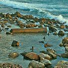 Waves Against the Rocks in Kesaria. by Nira Dabush