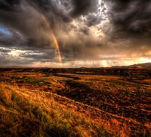 Rainbow Fields by Bob Larson