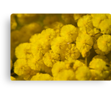Puffs Of Yellow Canvas Print