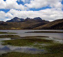 lake near cotopaxi volcano by nicole makarenco