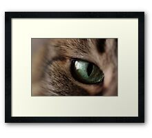 Green Eyed Girl II Framed Print