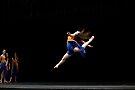 Flight of Fancy 1 by Alfredo Estrella