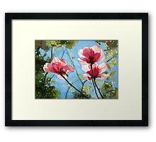 Botanicals 3 Framed Print