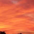 Salmon-colored sunset by kentuckashee