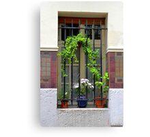 Parisian Window Canvas Print