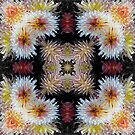 Dazzling Dahlias by Matthew Walmsley-Sims