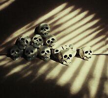 skulls by Barry W  King