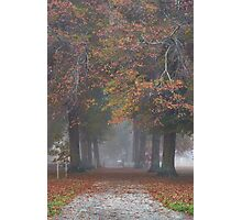 """Autumn Lane"", Yarra Valley, Victoria, Australia Photographic Print"