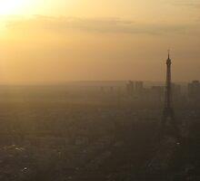 Eiffel Tower from Montparnasse Tower. by nikkijharris