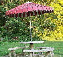 Umbrella and picnic table  by kentuckashee