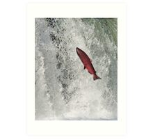 The Leaping Salmon Art Print
