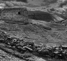 Barn Above The Swale: 2 by Mat Robinson