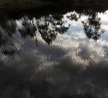 Reflection on ripples by Thom Kotis