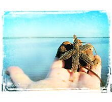 Marine offering Photographic Print
