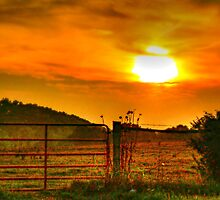 Country Sunset by Chelei