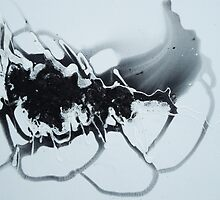Anomaly by Dmitri Matkovsky