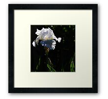 Come forth into the Light... Framed Print
